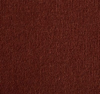 Westend Velvet Terracotta Carpet 4